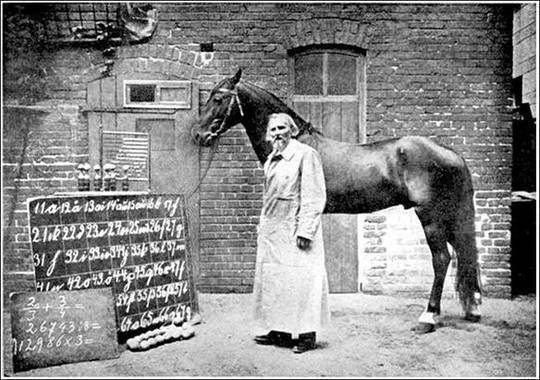 Clever Hans (The Horse of Mr. Von Osten) A contribution to experimental animal and human psychology