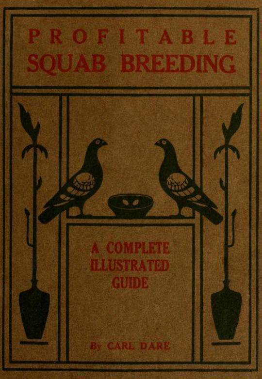 Profitable Squab Breeding
