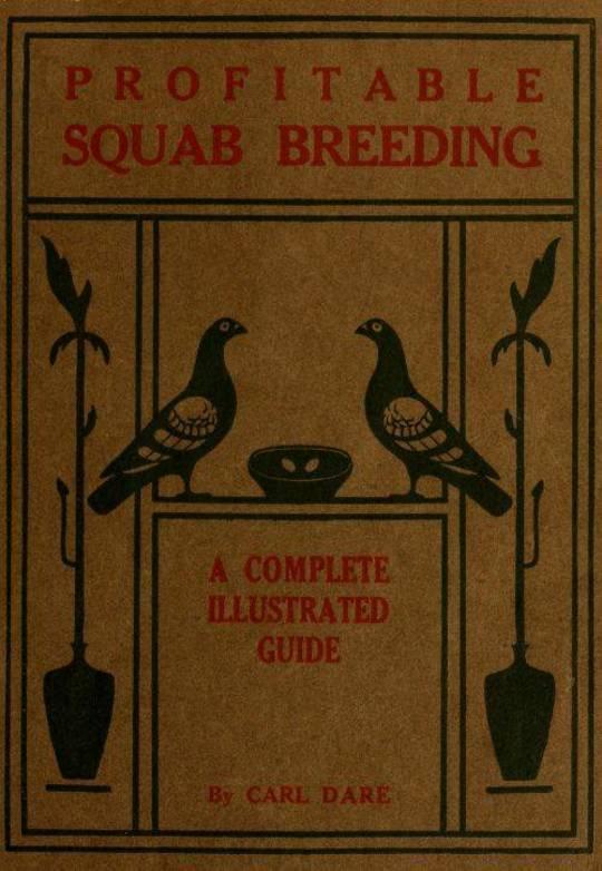 Profitable Squab Breeding