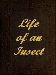 The Life of an Insect being a history of the changes of insects from the egg to the perfect being.