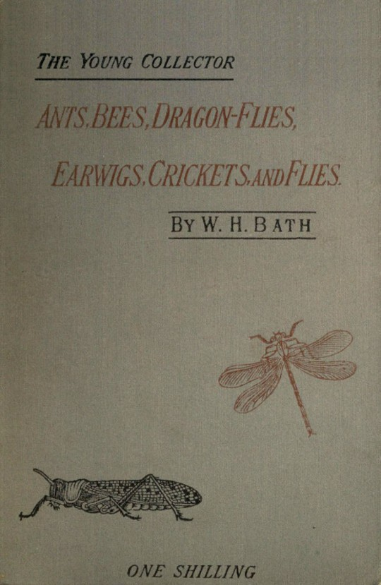 The Young Collector's Handbook of Ants, Bees, Dragon-flies, Earwigs, Crickets, and Flies Hymenoptera, Neuroptera, Orthoptera, Hemiptera, Diptera.