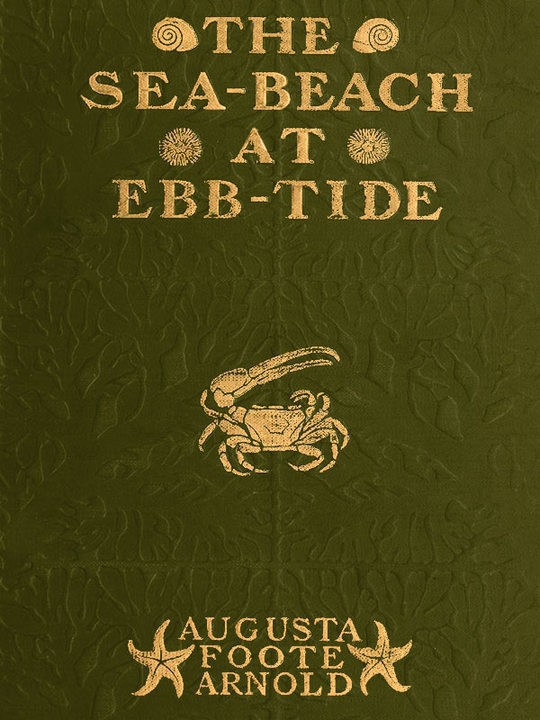 The Sea-beach at Ebb-tide A Guide to the Study of the Seaweeds and the Lower Animal Life Found Between Tide-marks