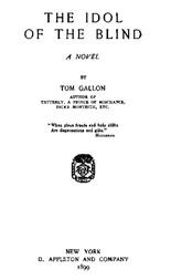The Idol of The Blind A Novel