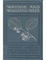 Wayside and Woodland Trees: A pocket guide to the British sylva