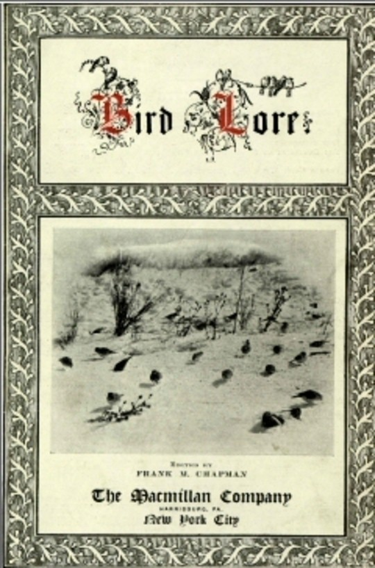 Bird Lore, Volume I—1899