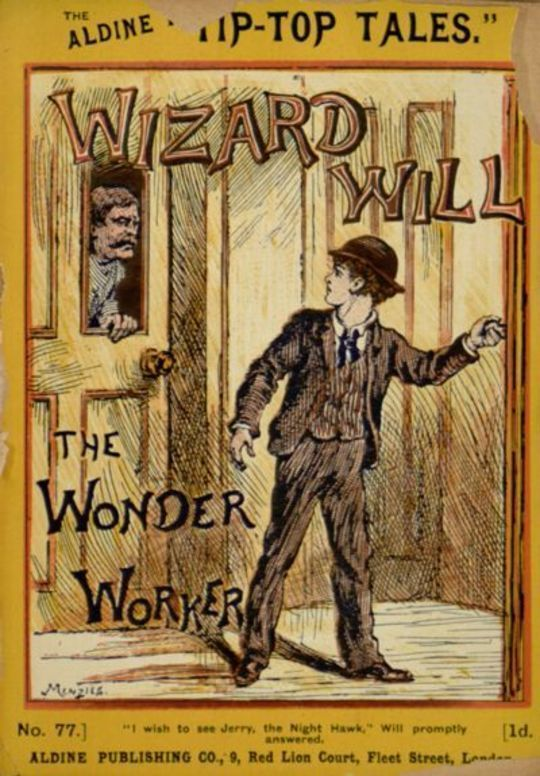 Wizard Will The Wonder Worker