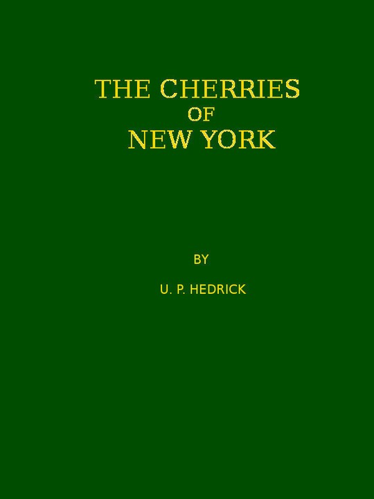 The Cherries of New York