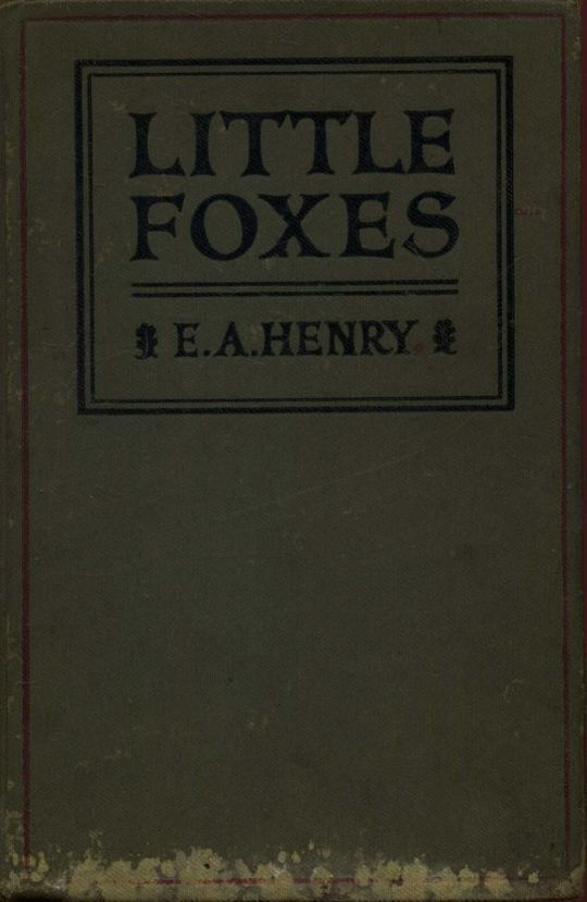 Little Foxes Stories for Boys and Girls
