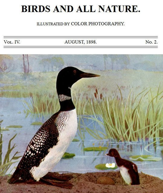Birds and all Nature, Vol. IV, No. 2, August 1898 Illustrated by Color Photography