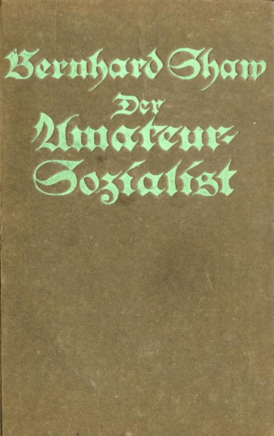 Der Amateursozialist Roman