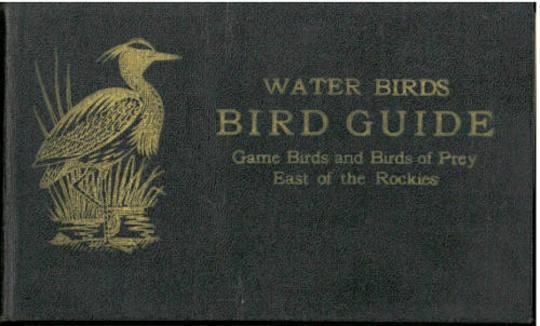 Bird Guide Water Birds, Game Birds, and Birds of Prey