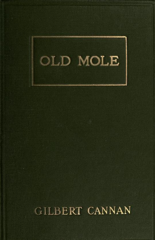 Old Mole Being the Surprising Adventures in England of Herbert Jocelyn Beenham, M.A., Sometime Sixth-Form Master at Thrigsby Grammar School in the County of Lancaster