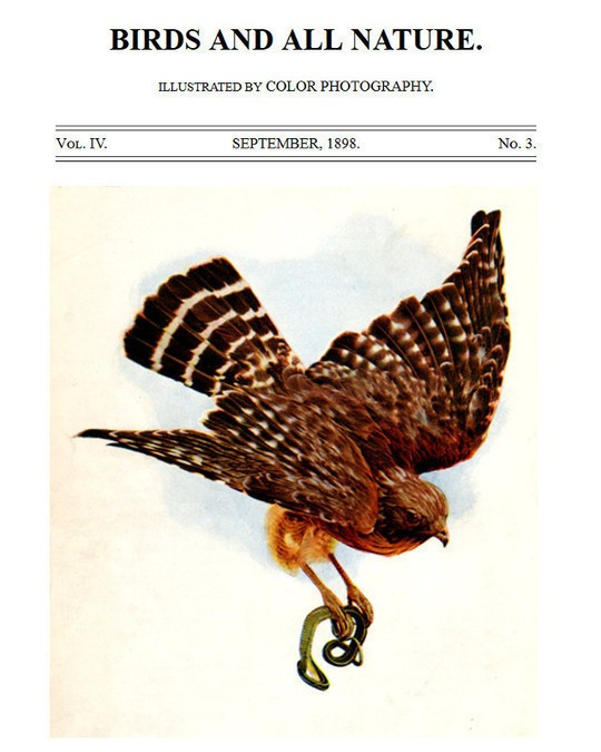 Birds and all Nature, Vol. IV, No. 3, September 1898 Illustrated by Color Photography