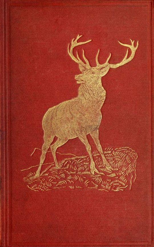 Katerfelto: A Story of Exmoor