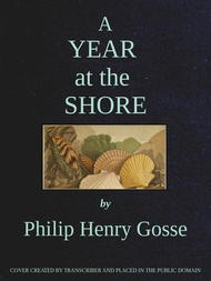 A Year at the Shore