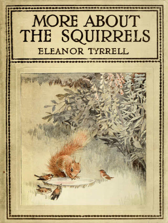 More About the Squirrels