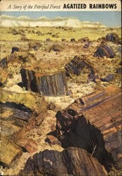 Agatized Rainbows A Story of the Petrified Forest