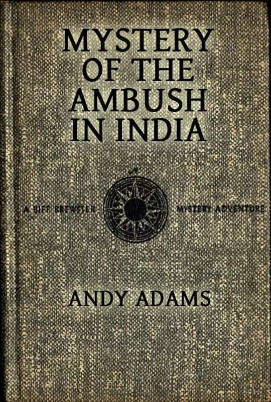 Mystery of the Ambush in India A Biff Brewster Mystery Adventure