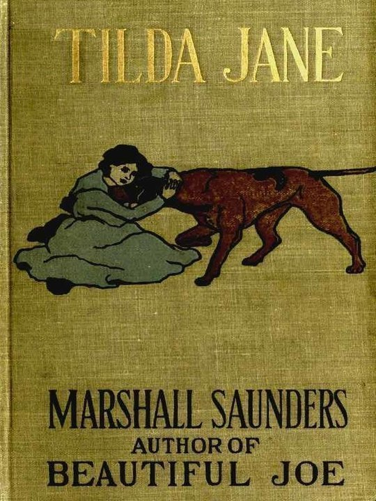 'Tilda Jane An Orphan in Search of a Home