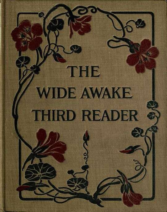 The Wide Awake Third Reader