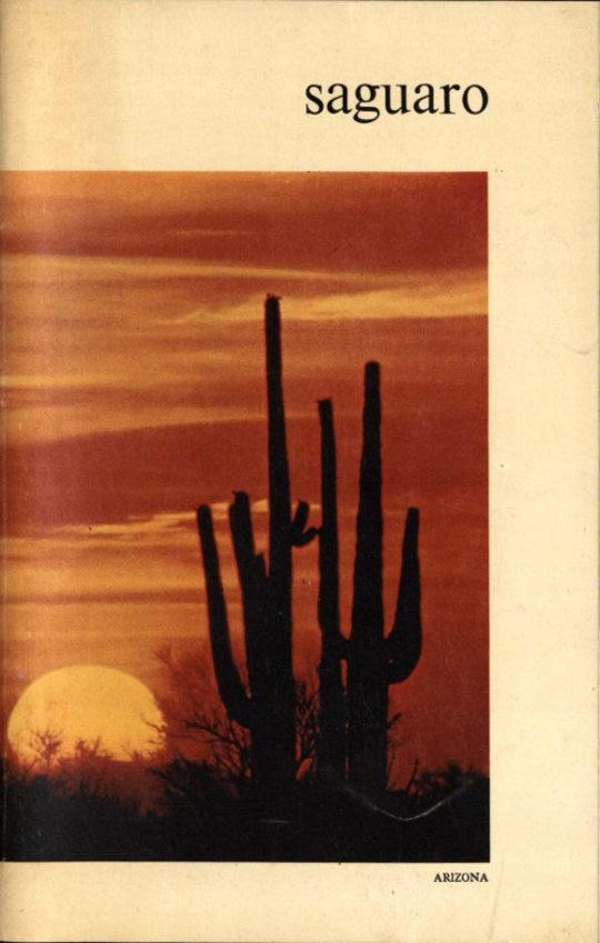 Saguaro National Monument, Arizona