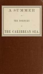 A summer on the borders of the Caribbean sea.