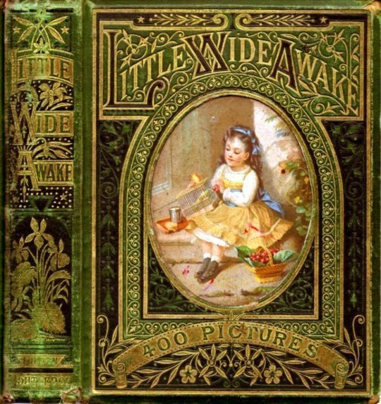 Little Wideawake A story book for little children