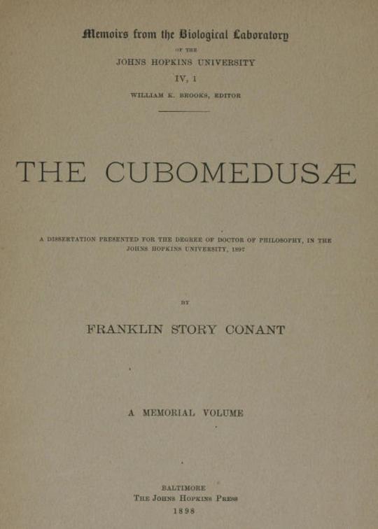 The Cubomedusæ