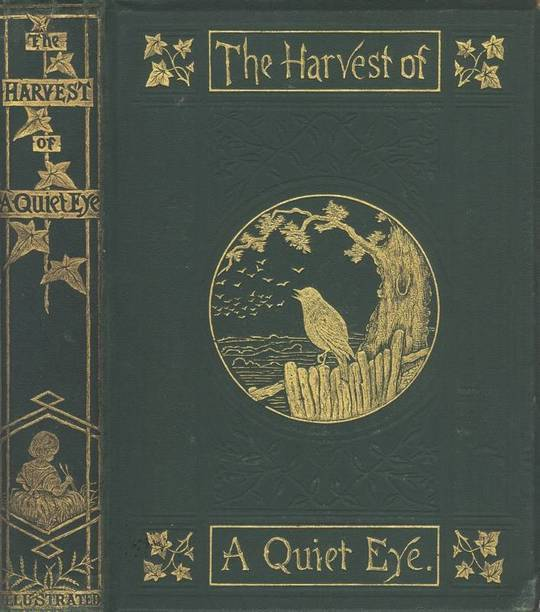 The Harvest of a Quiet Eye Leisure Thoughts for Busy Lives