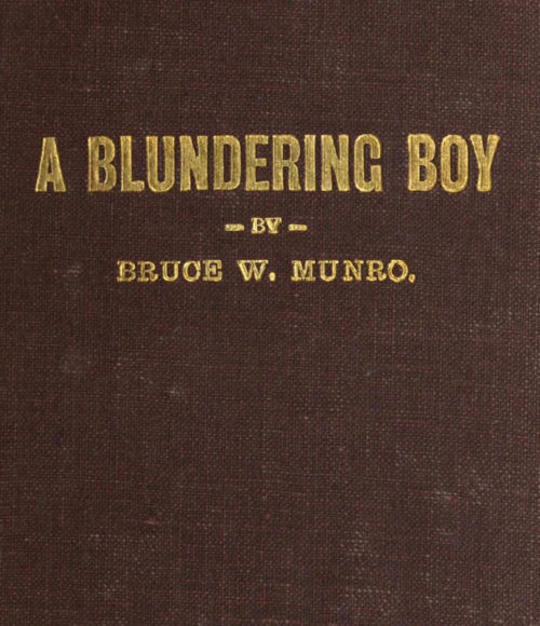 A Blundering Boy A Humorous Story
