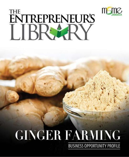 Business Opportunity Profile - Ginger Farming