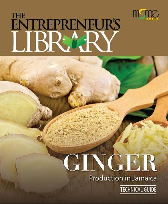 Technical Guide - Ginger
