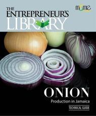 Technical Guide - Onion