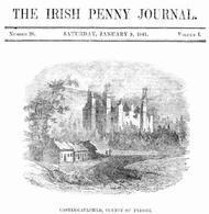 The Irish Penny Journal, Vol. 1 No. 28, January 9, 1841