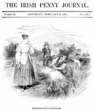 The Irish Penny Journal, Vol. 1 No. 32, February 6, 1841