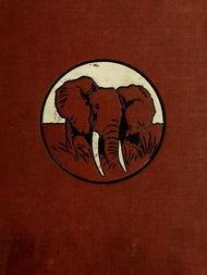In Wildest Africa Vol 2 (of 2)