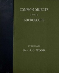 Common Objects of the Microscope