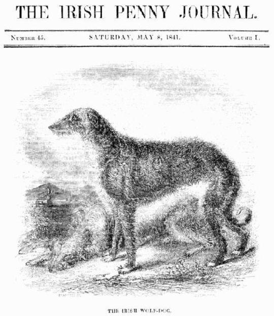 The Irish Penny Journal, Vol. 1 No. 45, May 8, 1841