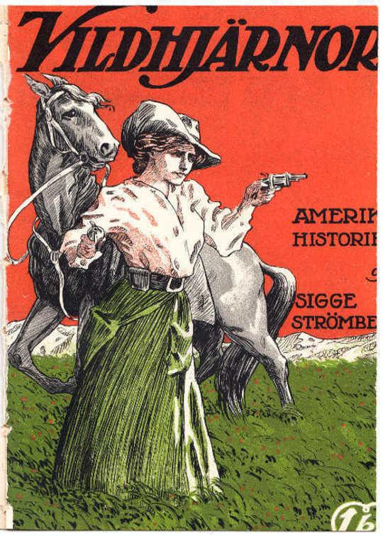 Vildhjärnor Amerikahistorier