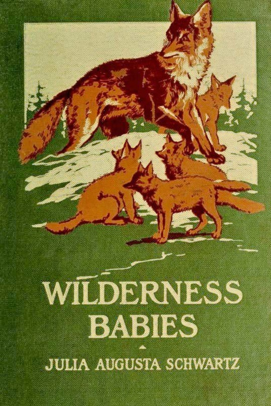 Wilderness Babies