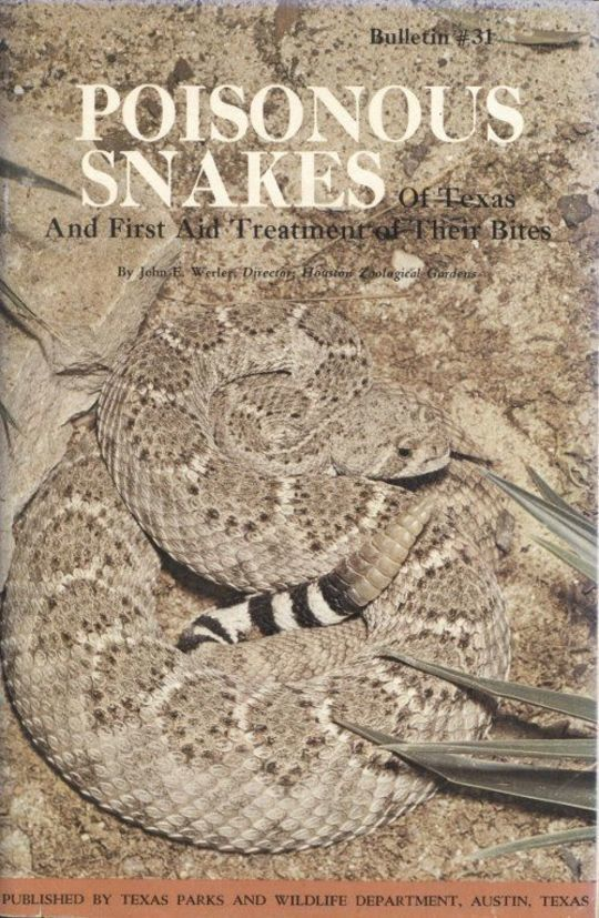 Poisonous Snakes of Texas and First Aid Treatment of Their Bites Bulletin No. 31