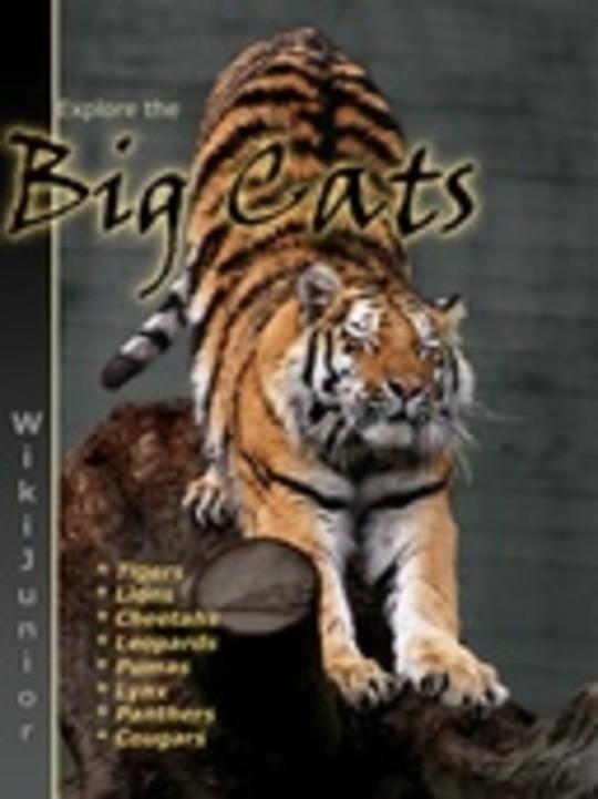 Wikijunior: Big Cats