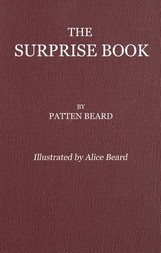 The Surprise Book