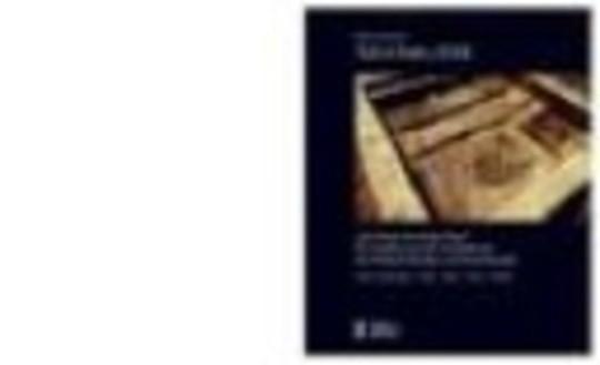 """Tell el-Dab'a XXII. """"Der Mund der beiden Wege"""". Teil II: Abbildungen-Tafeln-Pläne-Profile-Schnitte"""