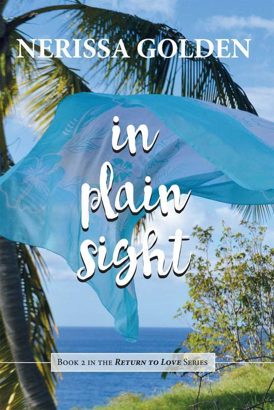 In Plain Sight (Return to Love, #2)