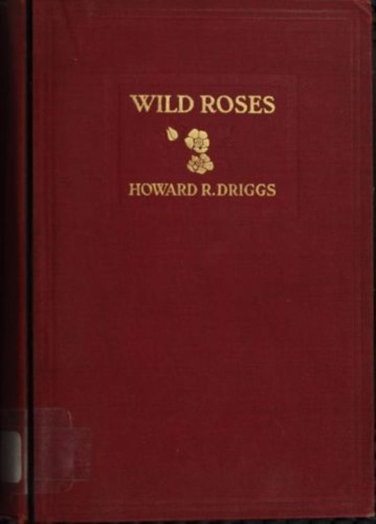 Wild Roses A Tale of the Rockies