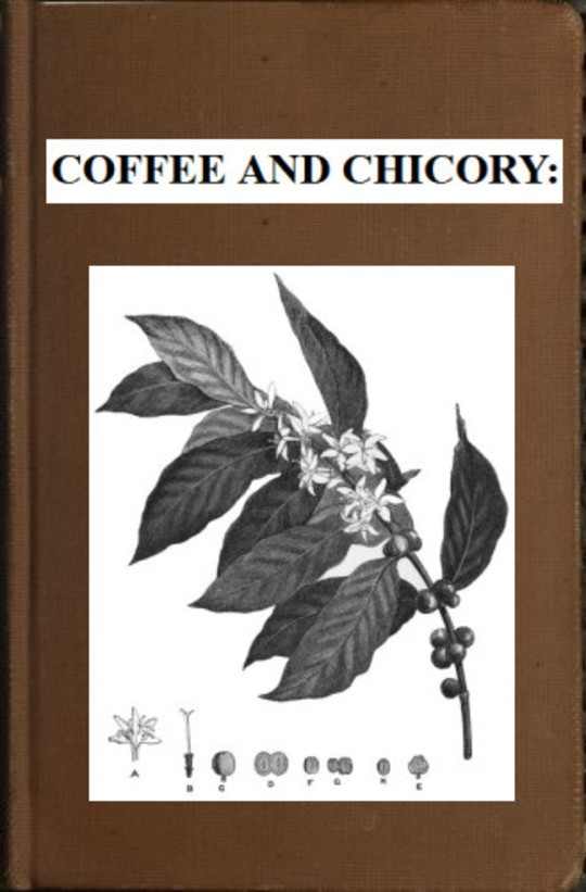 Coffee and Chicory: Their culture, chemical composition, preparation for market, and consumption.