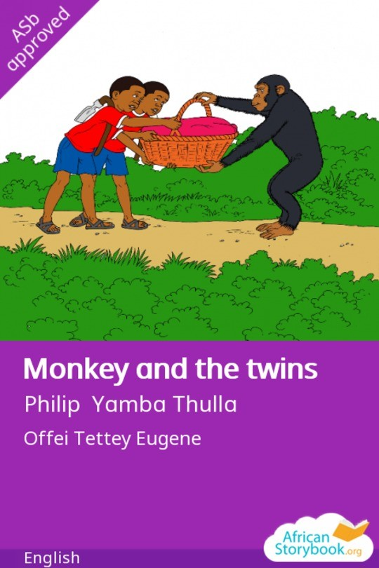 Monkey and the twins