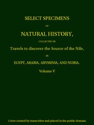 Select Specimens of Natural History Collected in Travels to Discover the Source of the Nile. Volume 5.