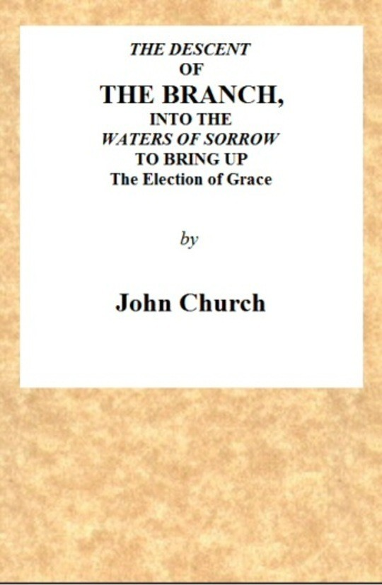 The Descent of the Branch into the Waters of Sorrow to bring up the Election of Grace